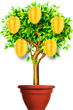плодоносное дерево в галактике знакомств
